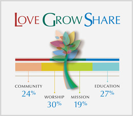 Community 24%, Education 27%, Worship 30%, Mission 19%